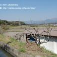 2011.04.14up 堅田周辺の町/Towns around Katata 034