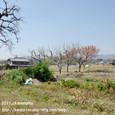 2011.04.14up 堅田周辺の町/Towns around Katata 035