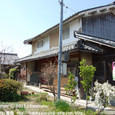 2011.04.15up 堅田周辺の町/Towns around Katata 038