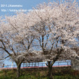 2011.04.16up 堅田周辺の町/Towns around Katata 043
