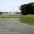 2011.06.03up 堅田周辺の町/Towns around Katata 050