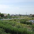 2011.06.13up 堅田周辺の町/Towns around Katata 060