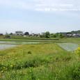 2011.06.18up 堅田周辺の町/Towns around Katata 066
