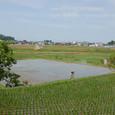 2011.06.21up 堅田周辺の町/Towns around Katata 069