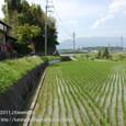 2011.06.23up 堅田周辺の町/Towns around Katata 071