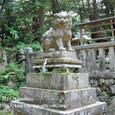 2011.07.03up 堅田周辺の町/Towns around Katata 082