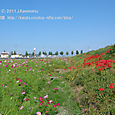 2011.09.29up 堅田周辺の町/Towns around Katata 095