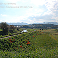 2011.09.29up 堅田周辺の町/Towns around Katata 099