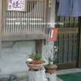 074 2010.03.02up Honkatata/本堅田 231 小料理屋さんの前で見つけた、小さな春