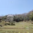 126 2011.04.17up 堅田周辺の町/Towns around Katata 045 春の棚田、空を飛ぶ白い鳥(サギ)
