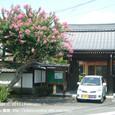 093 2010.08.04up Imakatata/今堅田 093 泉福寺のサルスベリ