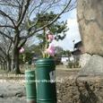 003 2008.03.09up Honkatata/本堅田032