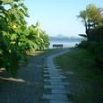037 2008.10.19up Honkatata/本堅田118 三上山(近江富士)とイチジクの木
