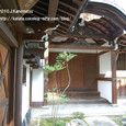096 2010.10.25up Honkatata/本堅田 322 祥瑞寺のナンテン