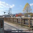 068 2009.11.27up Tenjingawa Green belt/天神川緑地 014