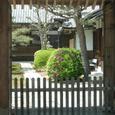 029 2008.05.26up Honkatata/本堅田050 妙盛寺のツツジ