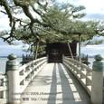 2009.01.04up Ukimido/浮御堂037