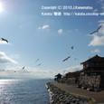 2010.02.14up 2012.03.31up Ukimido/浮御堂051