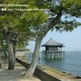 2009.04.20up Ukimido/浮御堂044