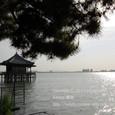2011.05.21up Ukimido/浮御堂070