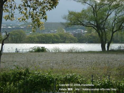 琵琶湖のキラキラした湖面