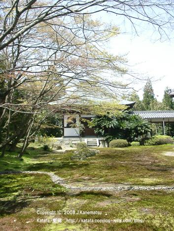 祥瑞寺の開山堂が、苔の美しい庭と4月の新緑の向こうに見える