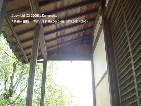 都久生須麻神社の背後から光。枝垂桜の新緑。