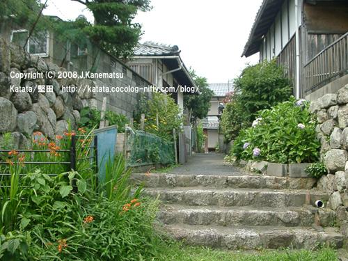 石塀に囲まれた古い住宅街の路地。オレンジ色のヒメヒオオギズイセンと薄紫のアジサイの花。
