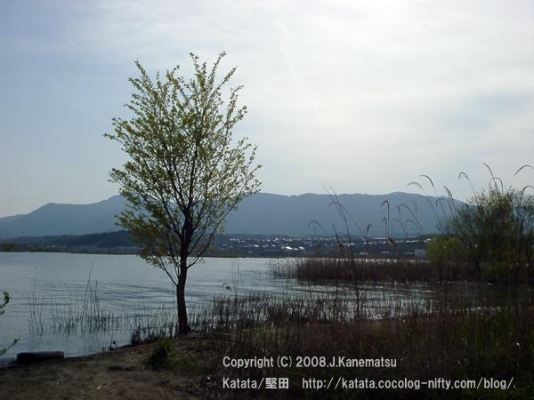 夕暮れの琵琶湖と比良山系、ふもとの住宅街の眺め