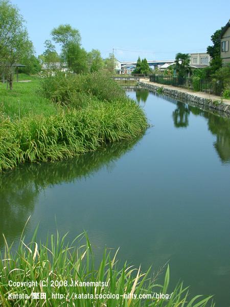 緑の公園と内湖