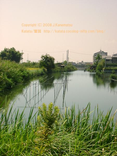 今道内湖バス停付近から見た堅田内湖