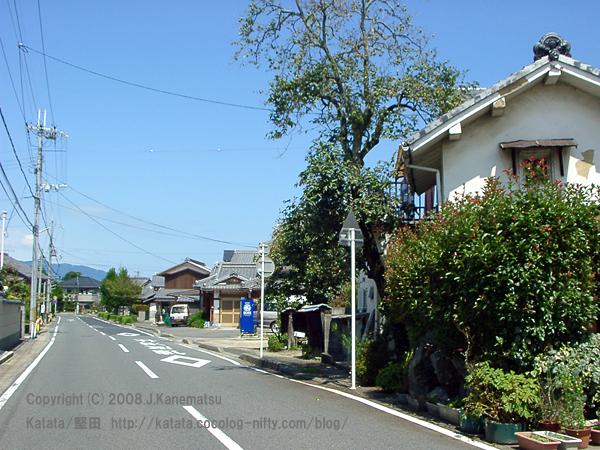 琵琶湖の近くの直線道路と民家、生垣、青い空