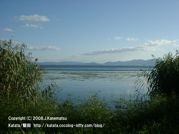 秋の琵琶湖の水辺