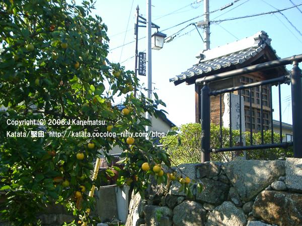 宮ノ切の地蔵堂と石段と柿の木