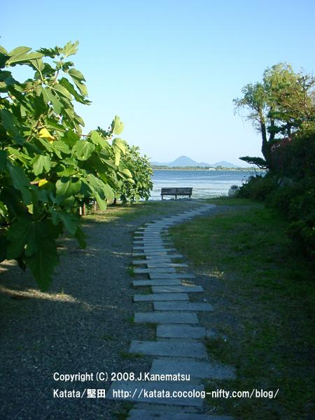 琵琶湖畔へと続くイチジクの木の小径。ベンチと対岸の三上山(近江富士)