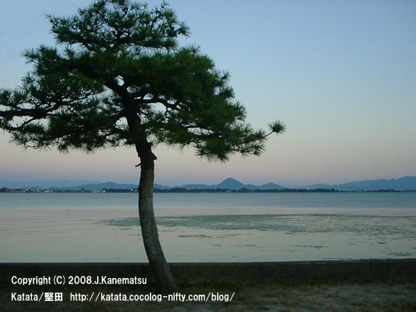 虹色の夕暮れ時の琵琶湖。対岸の三上山(近江富士)。手前に一本の松の木。