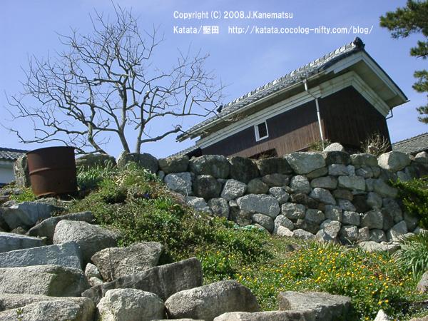 琵琶湖に面したお花畑と柿の木、蔵
