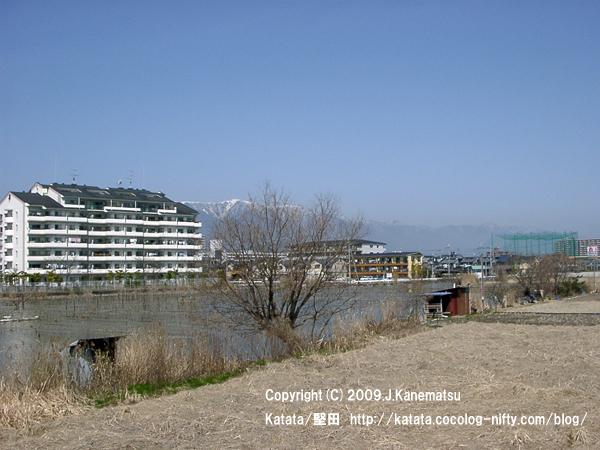 3月の堅田内湖