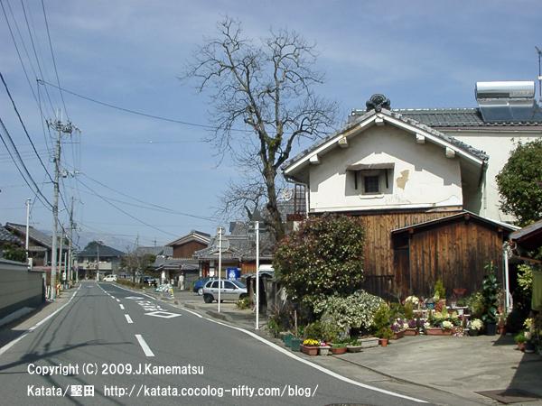 泉福寺の前を通る一本道