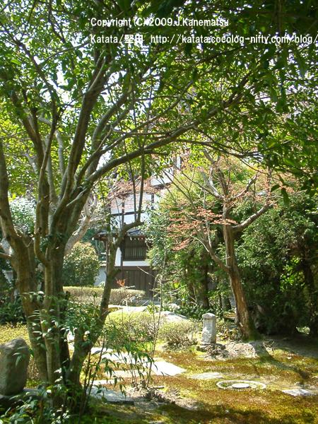 新緑の祥瑞寺