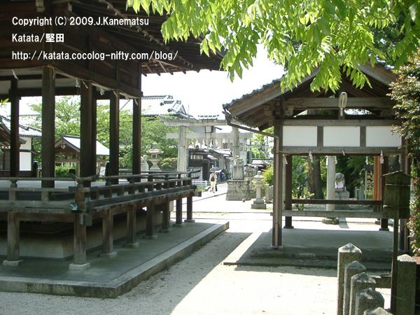 日傘を差す女性と伊豆神社