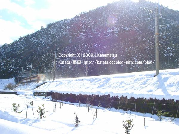 特急雷鳥の走る風景・近江高島