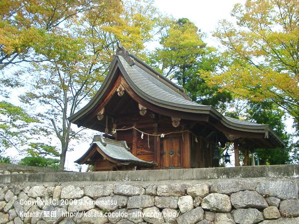 神田神社の紅葉
