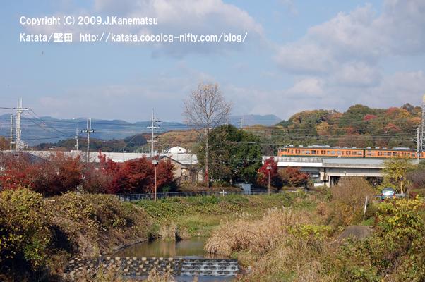 オレンジに緑の電車が、紅葉の中を走る