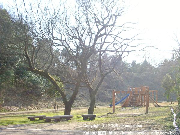 里山の中の自然派遊具