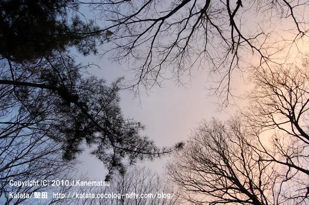 2010年1月1日、朝の空