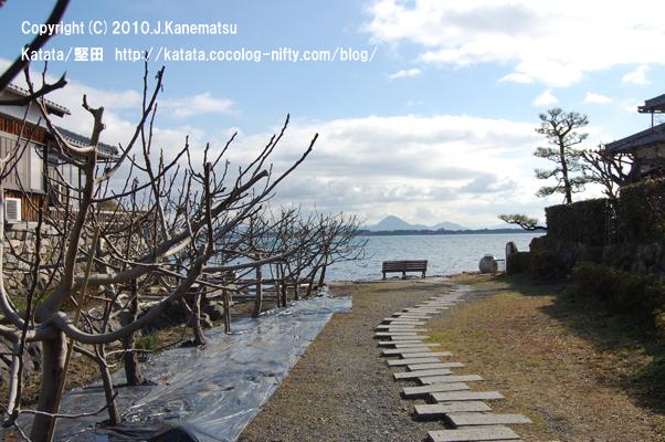 琵琶湖へ続く、いちじくの小径