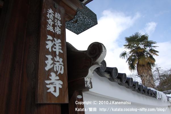 シュロの木と青空(祥瑞寺門前の雪どけ)