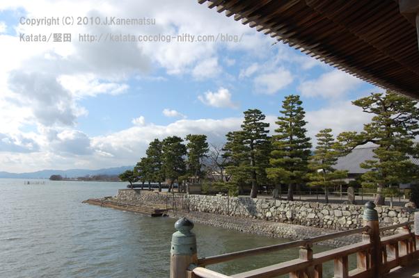 浮御堂の上から(1) 境内と、松の木と、琵琶湖と