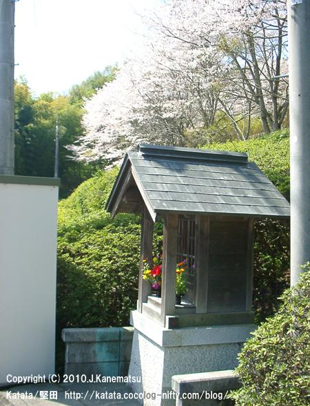 満開の桜と地蔵堂